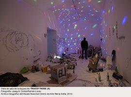 Tracey Rose (x). Vista de sala / gallery view (imagen 3)