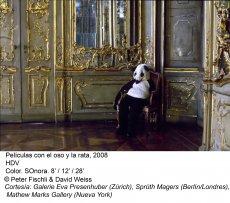 Peter Fischli / David Weiss. ¿Son los animales personas?(imagen 02)