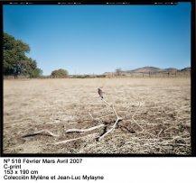 Jean-Luc Mylayne: Trazos de cielo en manos del tiempo(imagen 01)