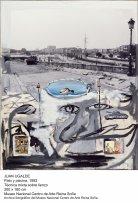 Juan Ugalde, Pato y piscina, 1992