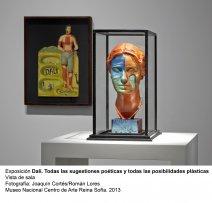 Dalí. Todas las sugestiones poéticas y todas las posibilidades plásticas, vista de sala / gallery view (imagen 2)