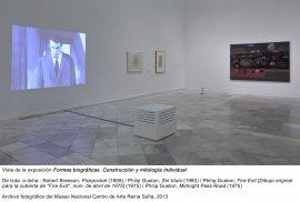 Formas biográficas, vista de sala / gallery view (imagen 8)