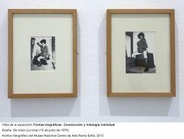 Formas biográficas, vista de sala / gallery view (imagen 12)