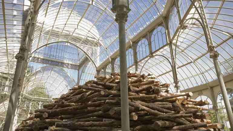 Vista de sala de la exposición. Andy Goldsworthy (En las entrañas del árbol), 2007